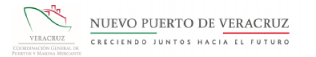 Nuevo Puerto de Veracruz Logo